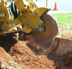 Stump Grinding Appleton