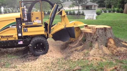 Stump grinding using Vemeer ER-17